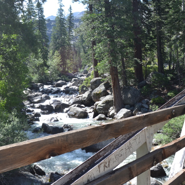 Emigrant Wilderness | Hiking In